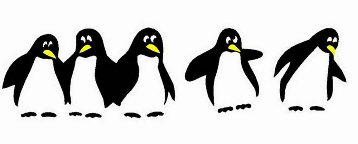 Funny Penguin Sticker Decals Dining Decorative Wall